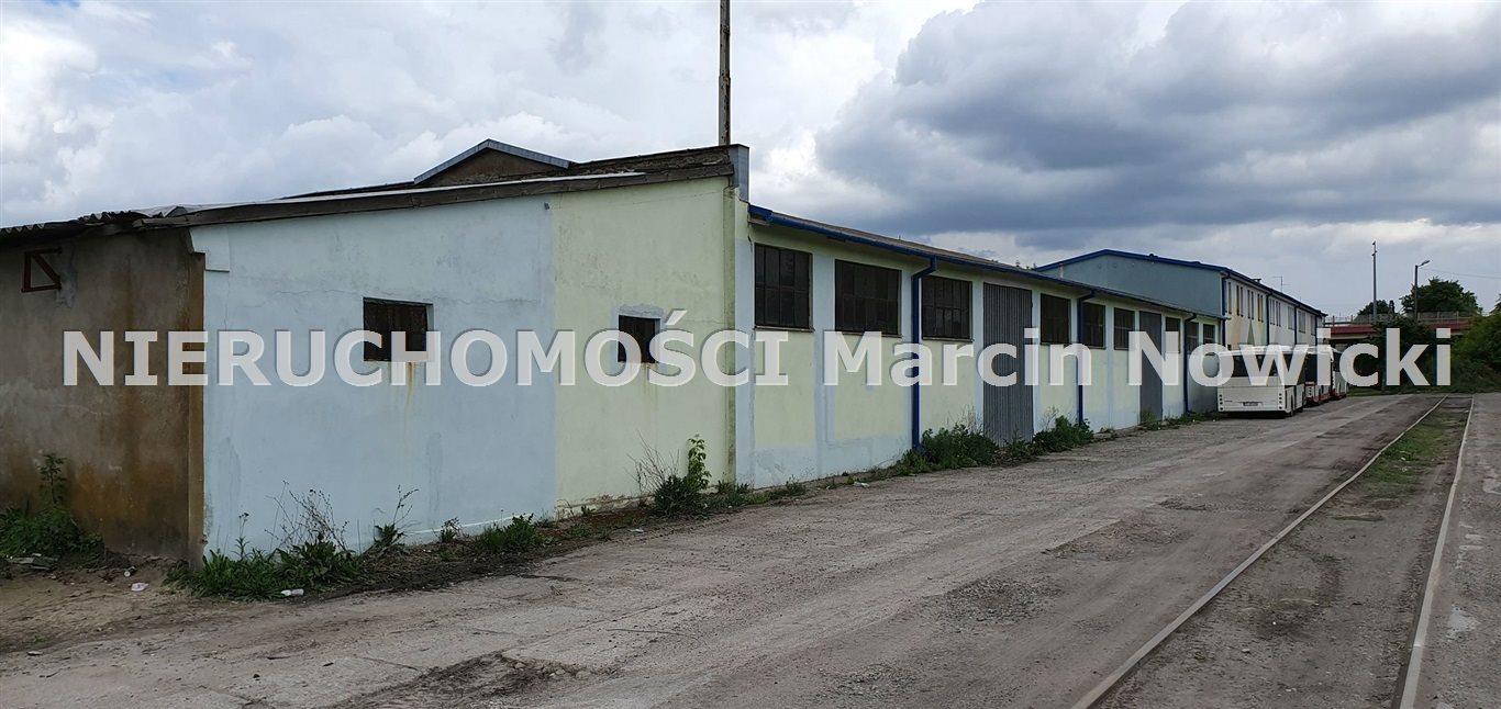 Lokal użytkowy na sprzedaż Kutno, Jagiellońska  1600m2 Foto 8