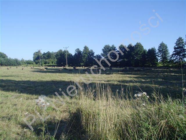 Działka budowlana na sprzedaż Kozery  3001m2 Foto 4