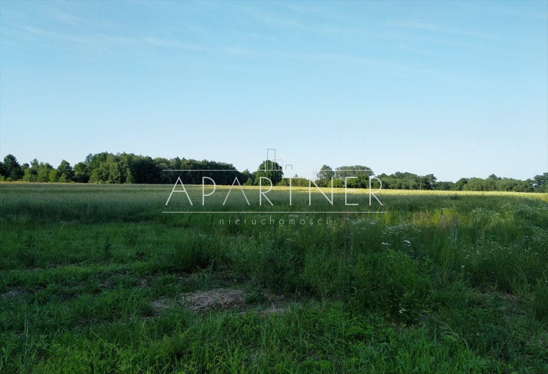 Działka rolna na sprzedaż Łódź, Jagodnica-Złotno  15206m2 Foto 3