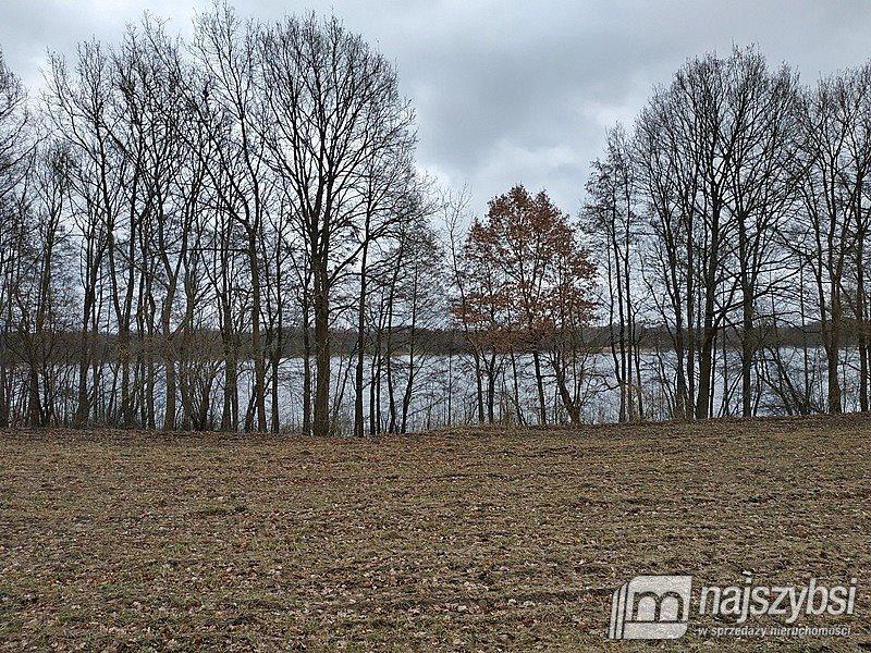 Działka rolna na sprzedaż Nętno, Wieś  2000m2 Foto 6