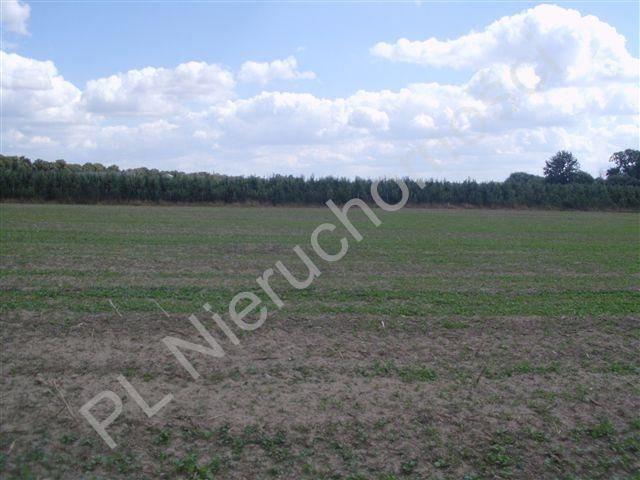 Działka rolna na sprzedaż Pasikonie  80347m2 Foto 8