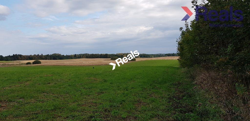 Działka rolna na sprzedaż Dąbrówka Polska  451200m2 Foto 1