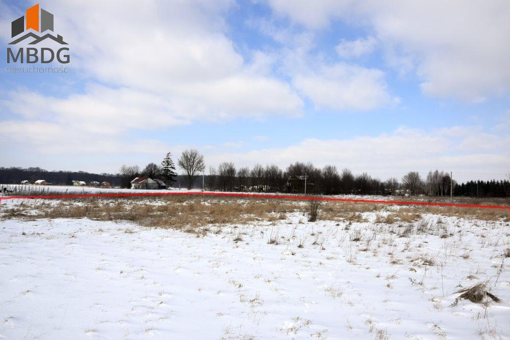 Działka rolna na sprzedaż Zabierzów Bocheński  3800m2 Foto 6
