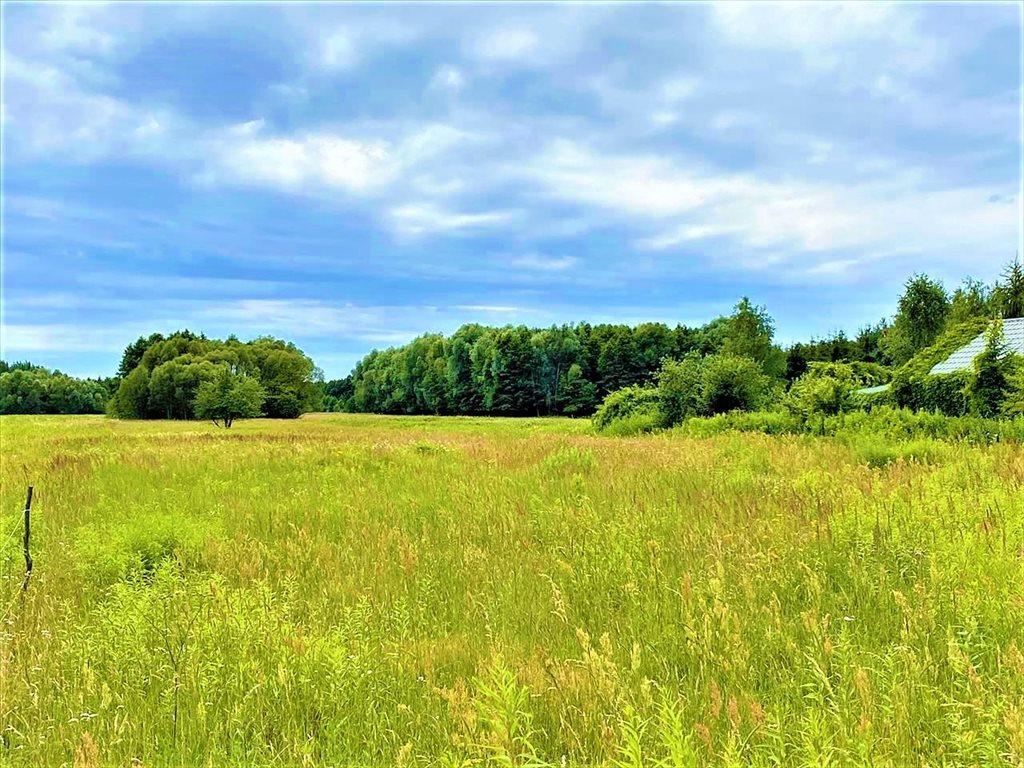 Działka rolna na sprzedaż Stare Budy Radziejowskie, Radziejowice  32300m2 Foto 8