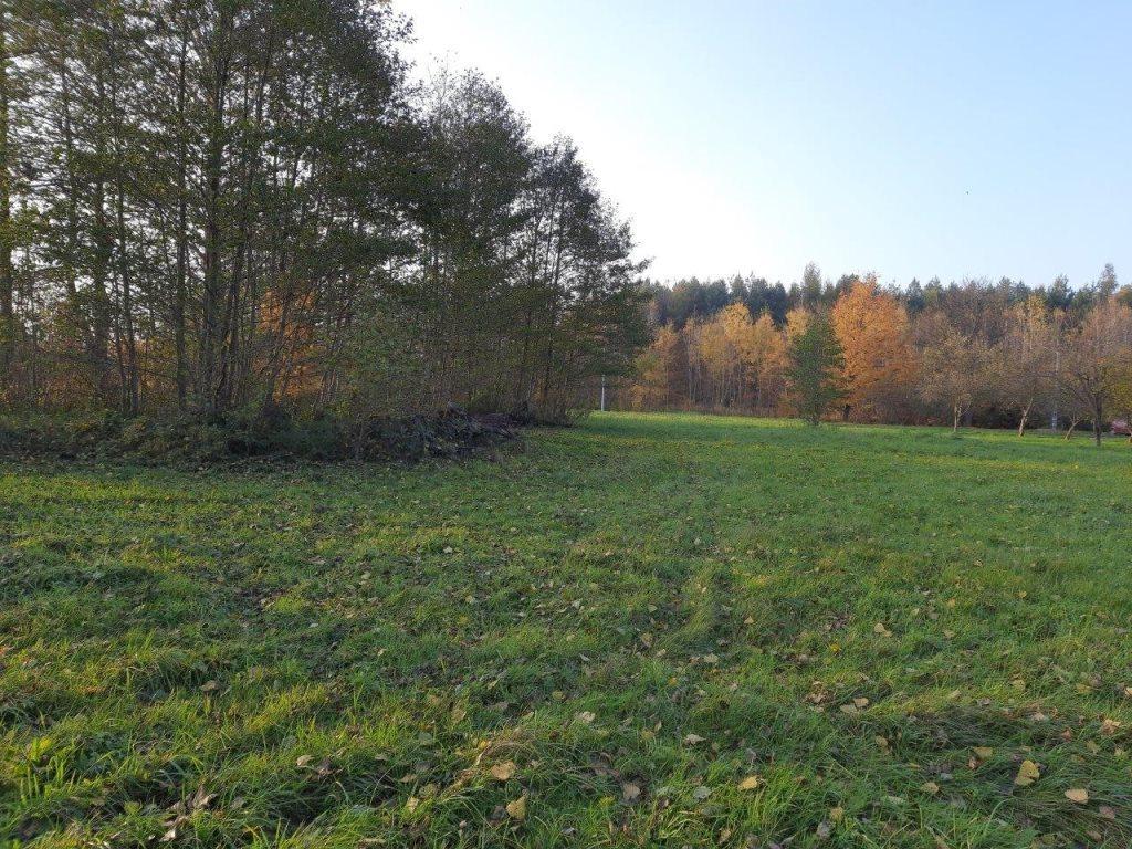Działka siedliskowa na sprzedaż Słubica-Wieś  3000m2 Foto 2