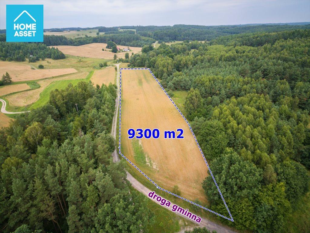 Działka rolna na sprzedaż Błotnia  9300m2 Foto 1