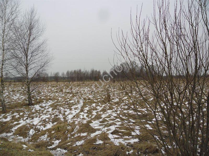 Działka rolna na sprzedaż Tyborów  4591m2 Foto 6