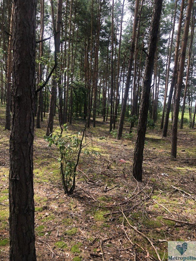 Działka budowlana na sprzedaż Sobiekursk  800m2 Foto 10