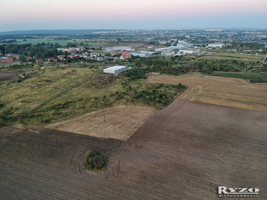 Działka komercyjna na sprzedaż Skarbimierzyce  8836m2 Foto 12