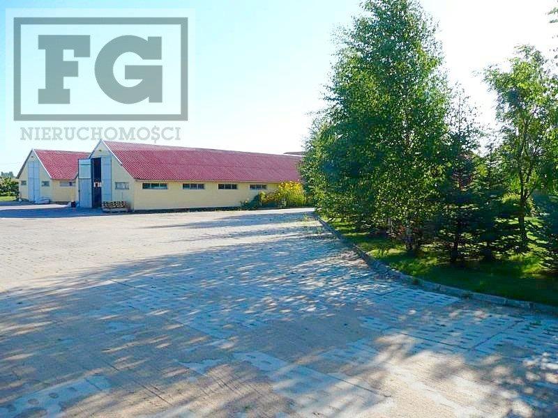 Lokal użytkowy na sprzedaż Gdańsk, Juszkowo, Cisowa  500m2 Foto 4
