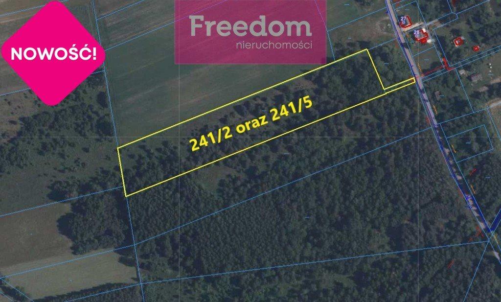 Działka leśna na sprzedaż Patok  16806m2 Foto 4