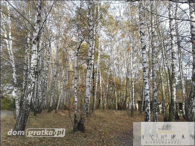 Działka leśna na sprzedaż Łódź, Bałuty  9761m2 Foto 5