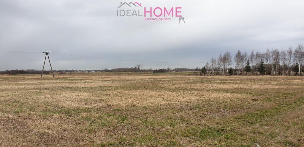 Działka rolna na sprzedaż Łąka  12000m2 Foto 2