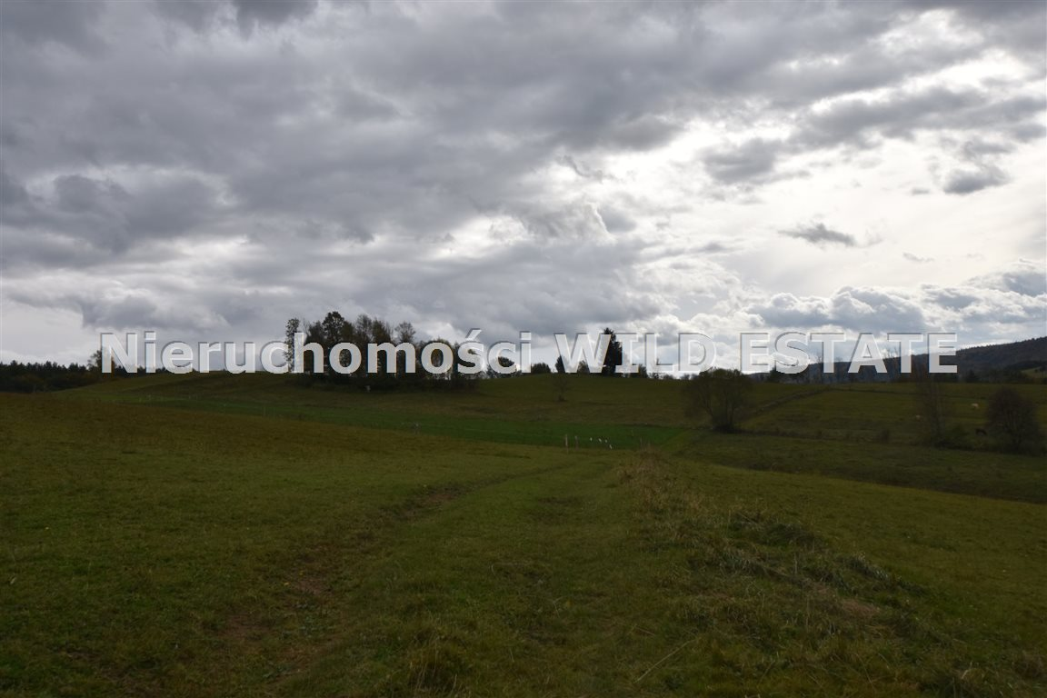 Działka rolna na sprzedaż Solina, Wola Matiaszowa  10329m2 Foto 3