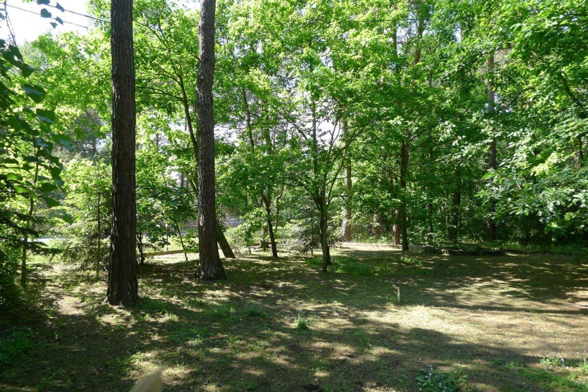 Działka leśna na sprzedaż Jedlicze A  1000m2 Foto 2