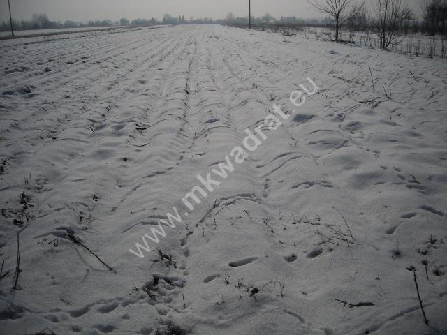 Działka inwestycyjna na sprzedaż Płochocin  5200m2 Foto 2