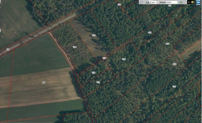 Działka leśna na sprzedaż Rydzewo-Świątki  3600m2 Foto 3