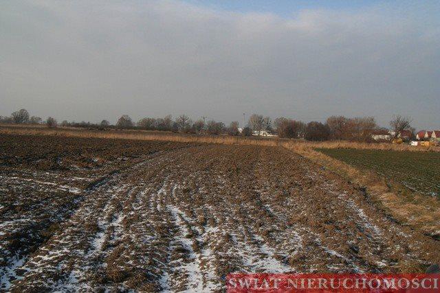 Działka komercyjna na sprzedaż Wrocław, Muchobór Wielki, Muchobór Wielki  37236m2 Foto 5