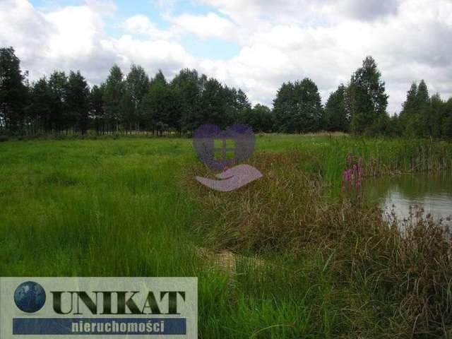 Działka rolna na sprzedaż Woźnawieś  21700m2 Foto 7