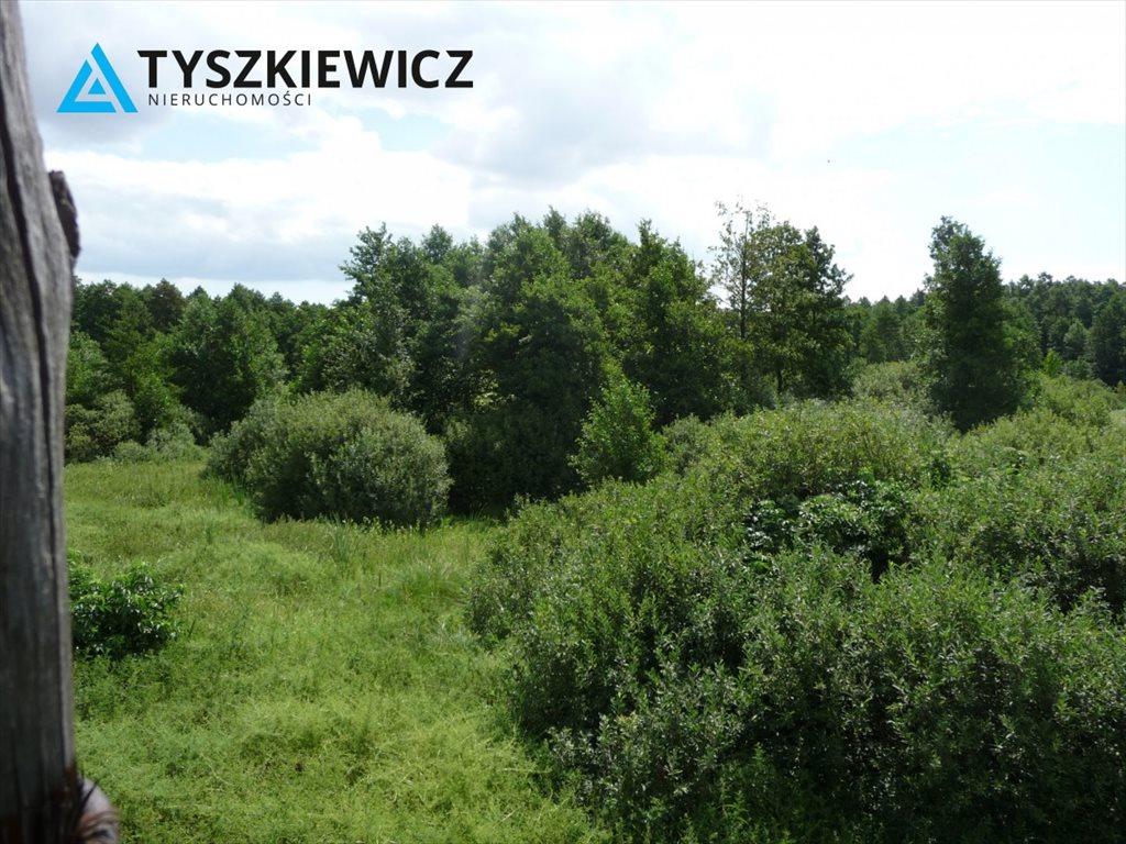 Działka rekreacyjna na sprzedaż Chojnice  15000m2 Foto 1