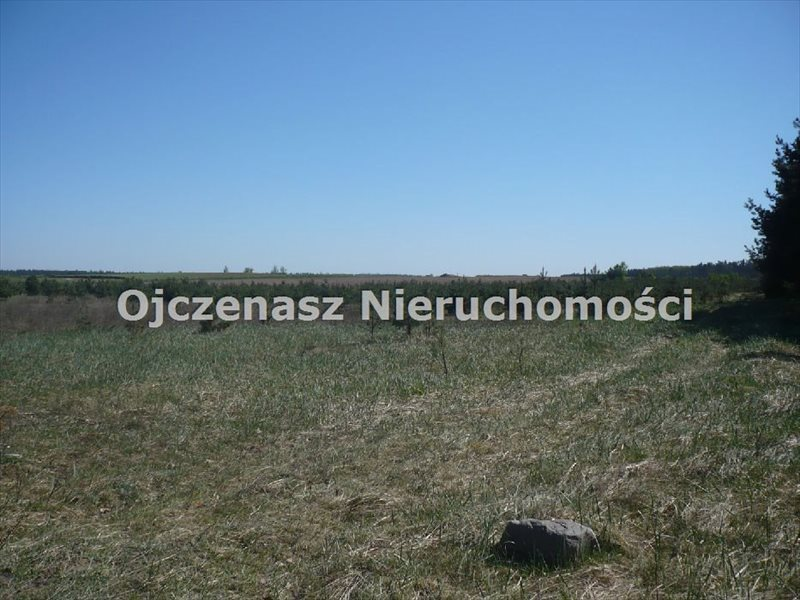 Działka siedliskowa na sprzedaż Stronno  3005m2 Foto 4