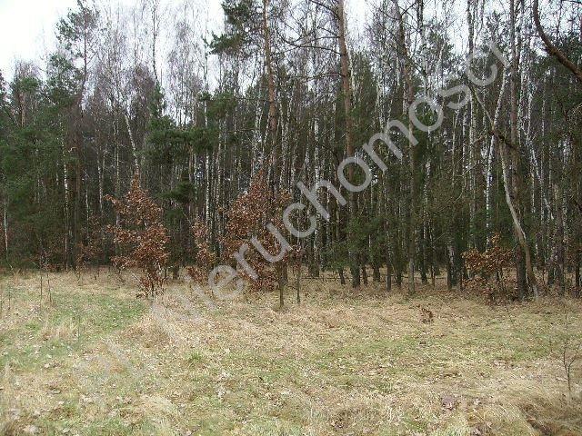 Działka rolna na sprzedaż Mszczonów  28100m2 Foto 3