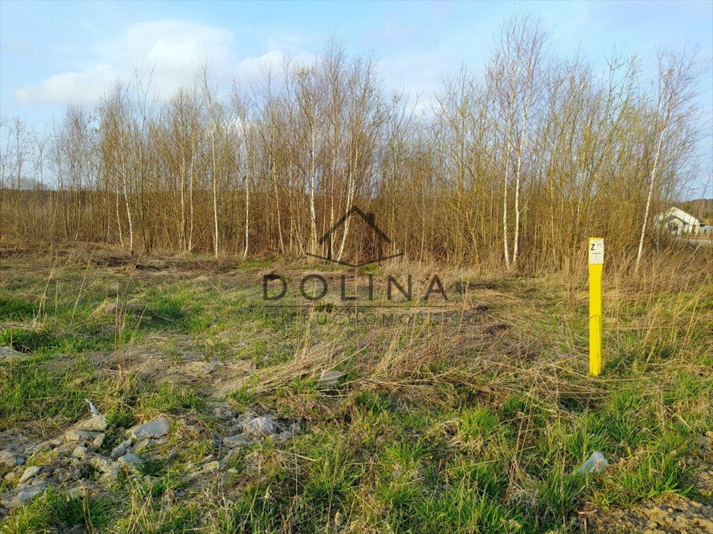 Działka budowlana na sprzedaż Dobrzewino, Siewna  1710m2 Foto 6