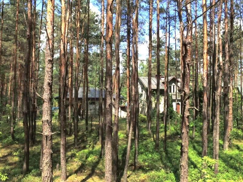 Działka budowlana na sprzedaż ŻARKI LETNISKO, ŻARKI LETNISKO, Kąpielowa  1050m2 Foto 2