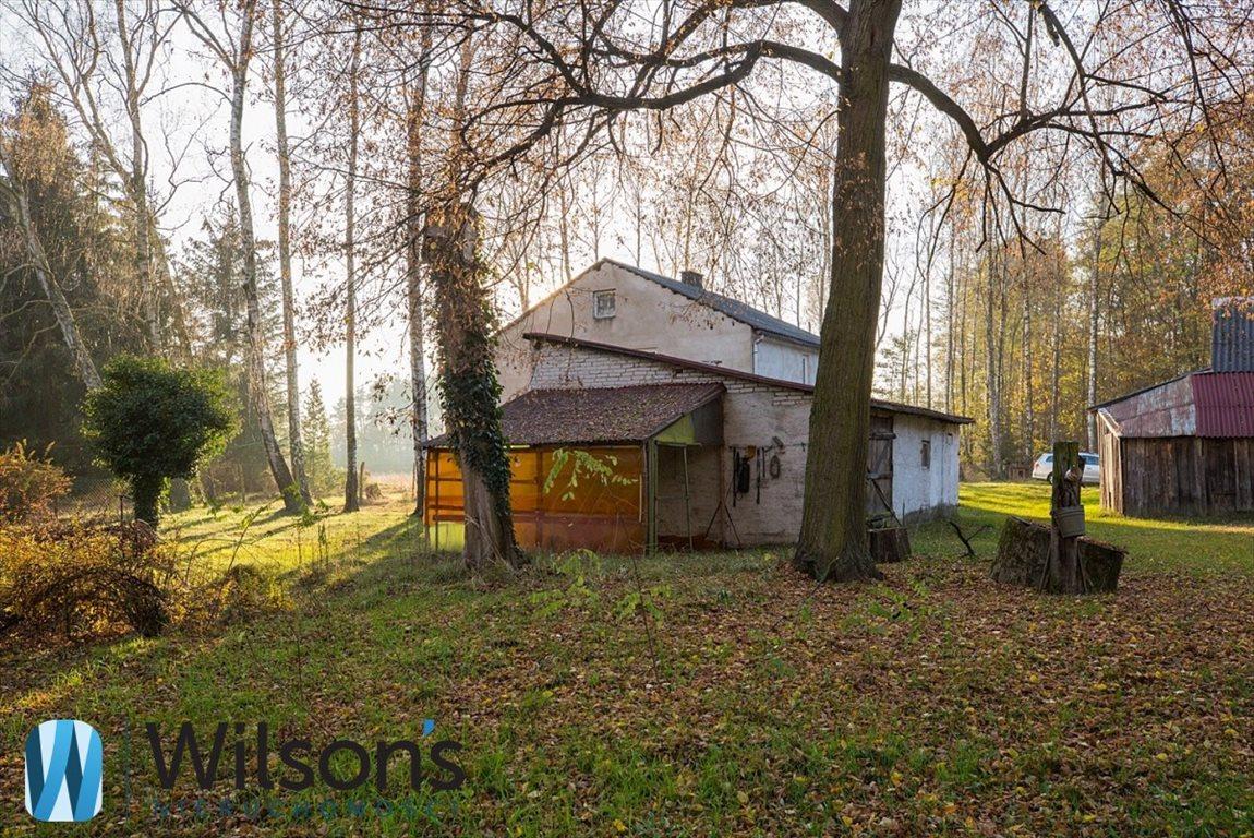 Działka siedliskowa na sprzedaż Gąba  58565m2 Foto 6