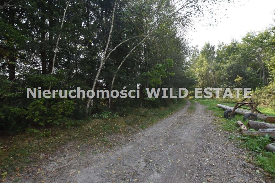 Działka rolna na sprzedaż Lesko, Weremień  3177m2 Foto 5