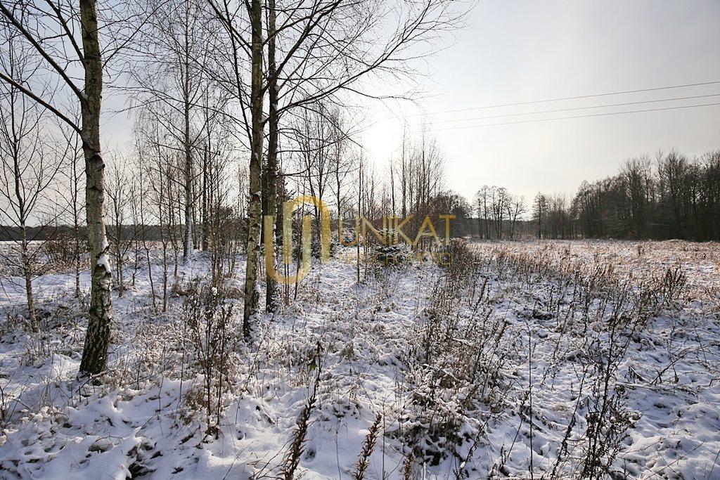Działka inna na sprzedaż Tatarowce  4213m2 Foto 4