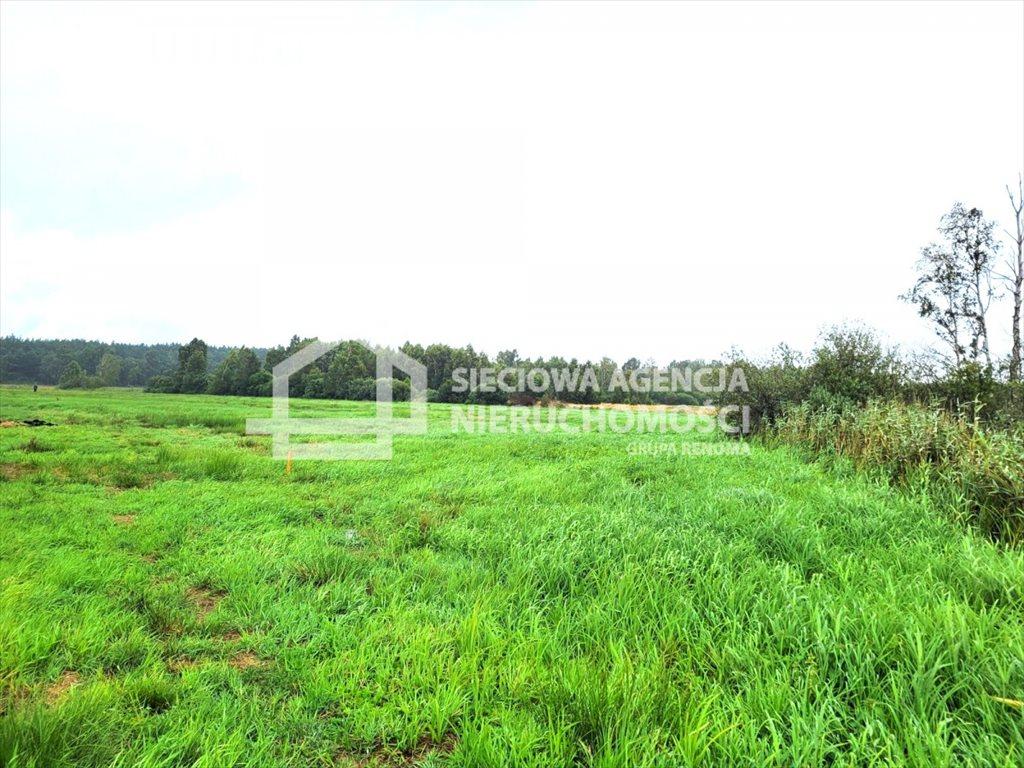 Działka rolna na sprzedaż Sasino  28300m2 Foto 1