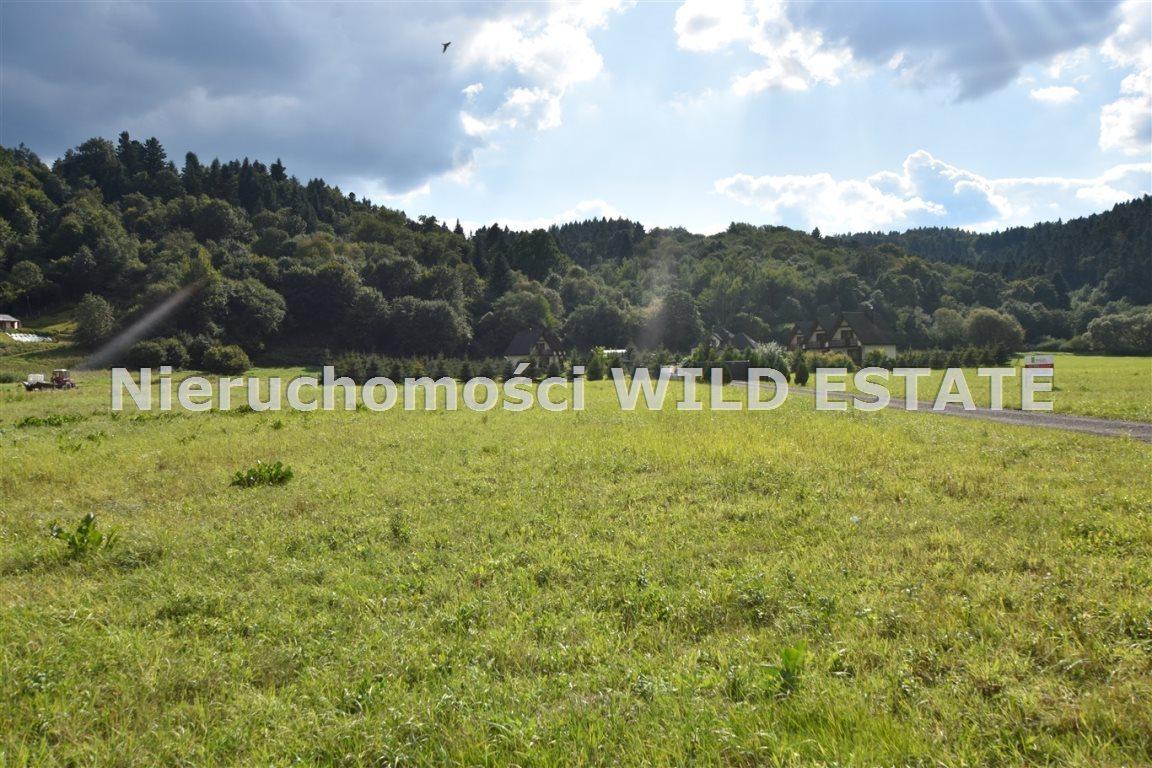 Działka rolna na sprzedaż Lesko, Huzele  3025m2 Foto 2