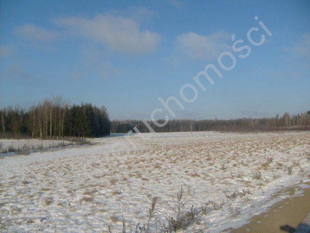 Działka rolna na sprzedaż Mszczonów  9700m2 Foto 8