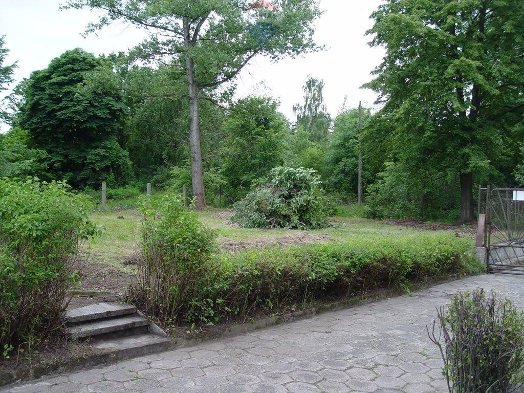 Lokal użytkowy na sprzedaż Bielawa Dolna  10000m2 Foto 9