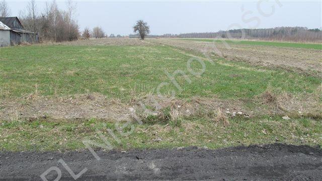 Działka rolna na sprzedaż Tyborów  1967m2 Foto 2