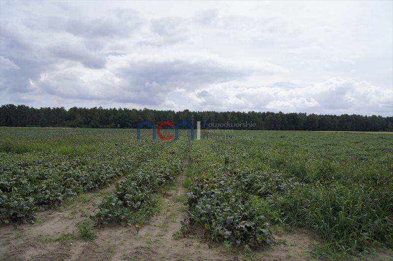 Działka przemysłowo-handlowa na sprzedaż Zakroczym  39100m2 Foto 4