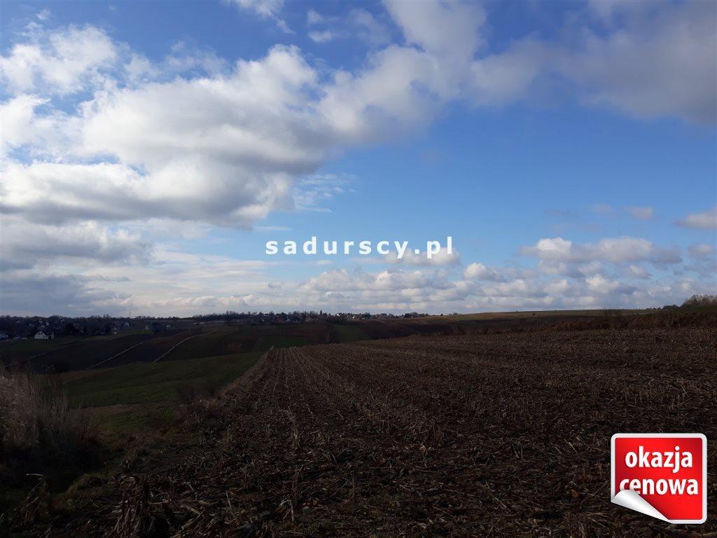 Działka rolna na sprzedaż Głęboka  10143m2 Foto 1