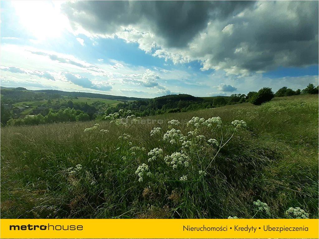 Działka rolna na sprzedaż Morochów, Zagórz  10000m2 Foto 4
