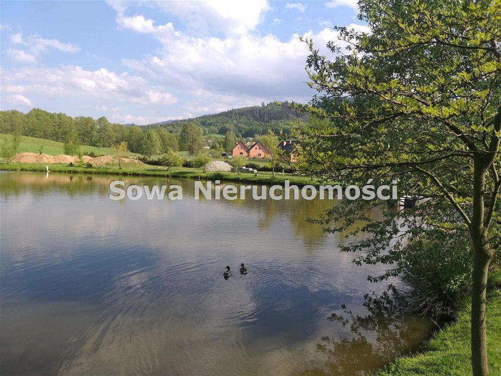 Działka inna na sprzedaż Sosnówka  6000m2 Foto 5