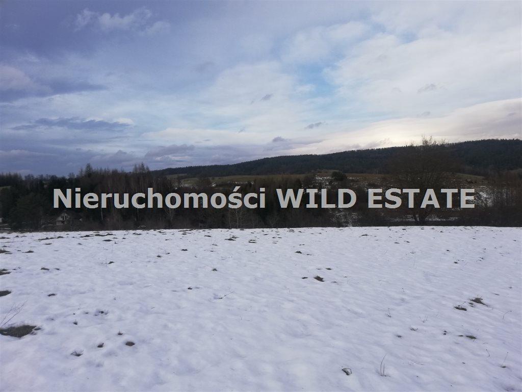Działka rolna na sprzedaż Lesko, Dziurdziów  34742m2 Foto 2