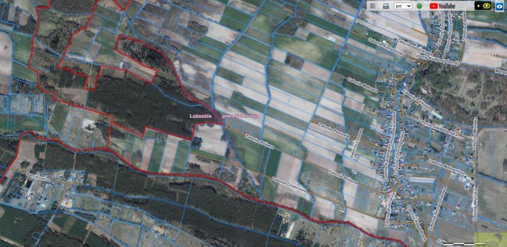 Działka rolna na sprzedaż Zielona Góra, Zatonie-Różana  26987m2 Foto 9