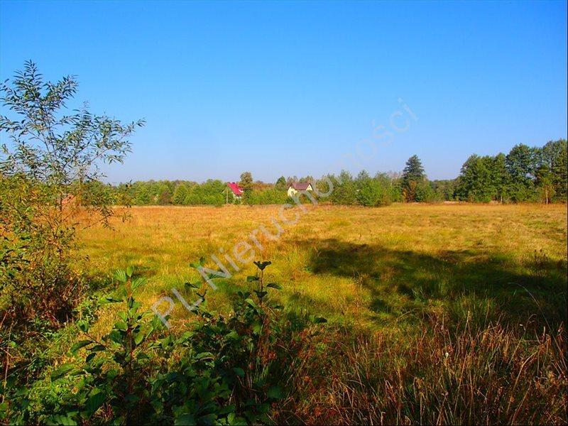 Działka rolna na sprzedaż Stanisławów  12800m2 Foto 6
