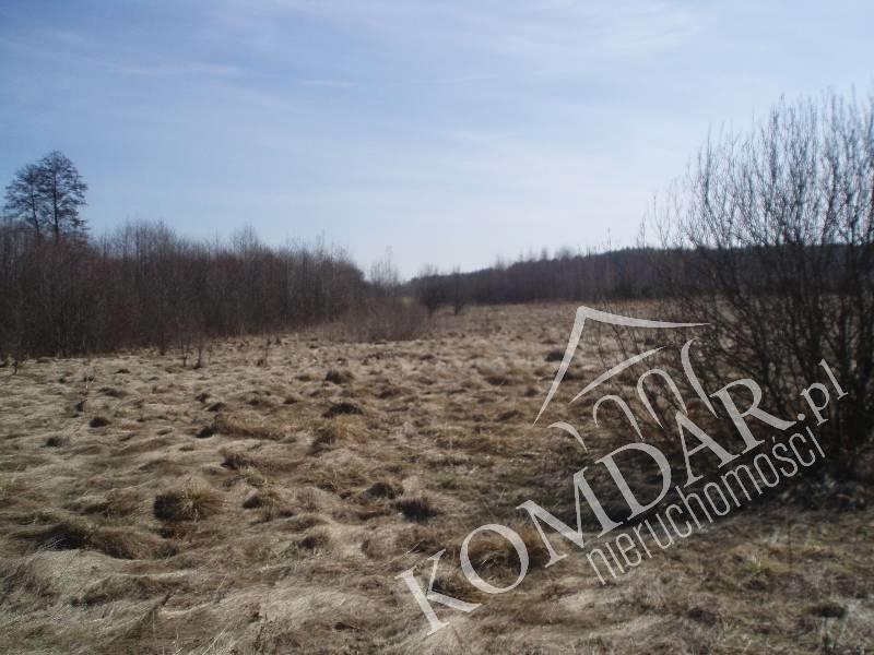 Działka rolna na sprzedaż Pokrzywnica  49500m2 Foto 3