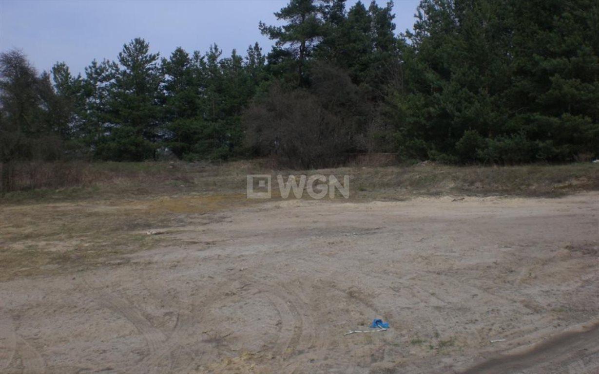 Działka budowlana na sprzedaż Twardogóra, Chełstówek, Chełstówek  3800m2 Foto 3