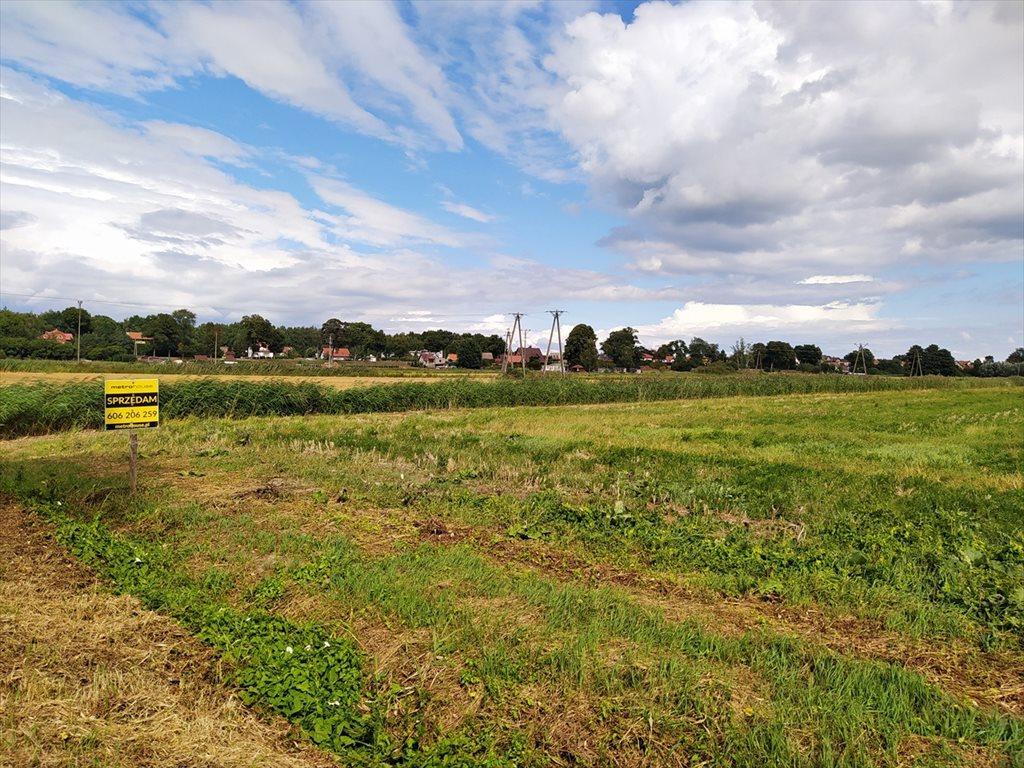 Działka siedliskowa na sprzedaż Sztutowo, Sztutowo  2815m2 Foto 6