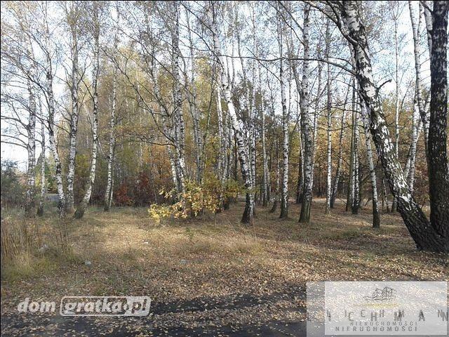 Działka leśna na sprzedaż Łódź, Bałuty  9761m2 Foto 1
