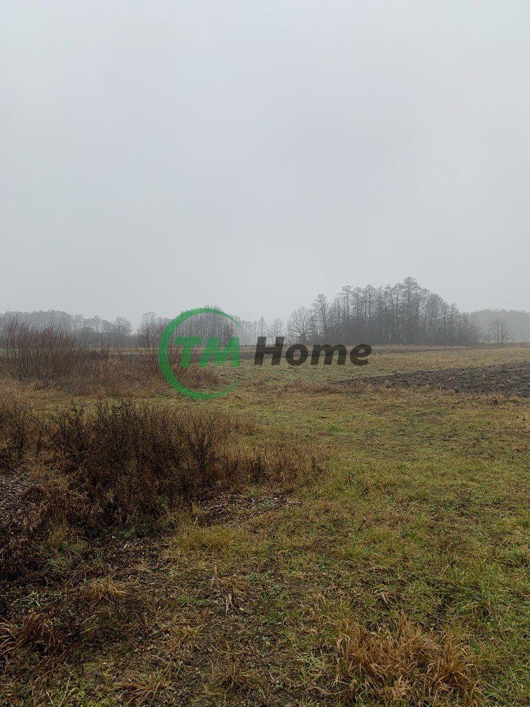 Działka rolna na sprzedaż Łosewo  12000m2 Foto 1