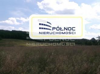 Działka rolna pod dzierżawę Płóczki Górne  800000m2 Foto 1