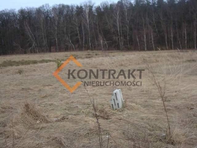 Działka rolna na sprzedaż Przęsocin  3005m2 Foto 5